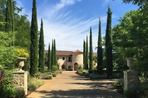 "<p style=""text-align: left;"">Vineyard Estate</p>"